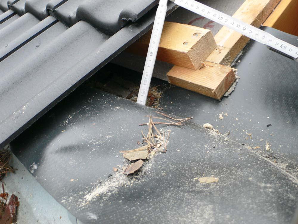 Wasserschaden am Dach