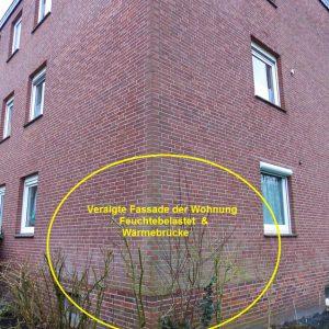 2-Fassade-mit-Algenbesatz-feuchtebelastet-Waermebruecke-Schimmel