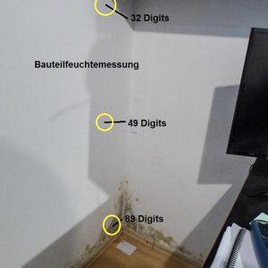 3-Schimmelpilzbefall-und-Messung-der-Feuchte-Waermebruecke
