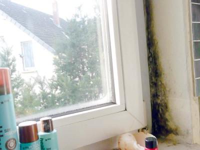 Schimmel an Fensterlaibung durch Baumangel
